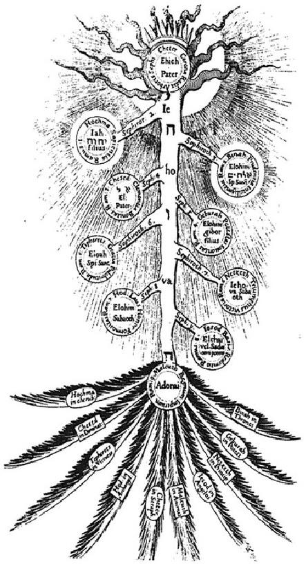 kaballa-tree-2.jpg