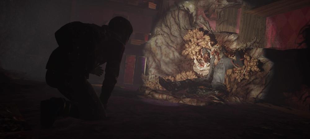 The Last of Us Zampo1it.jpg