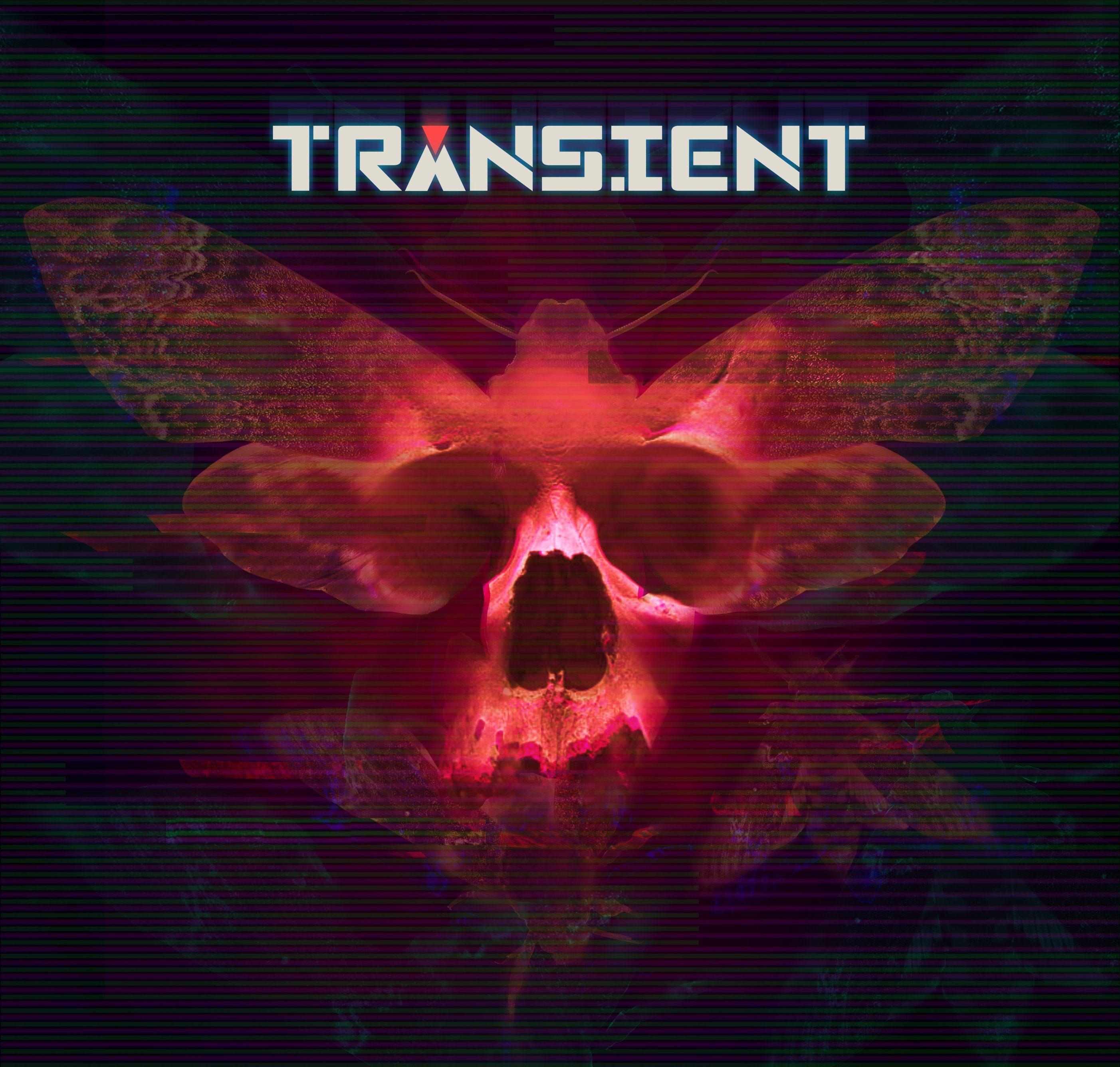 transient_key_art_(logo)