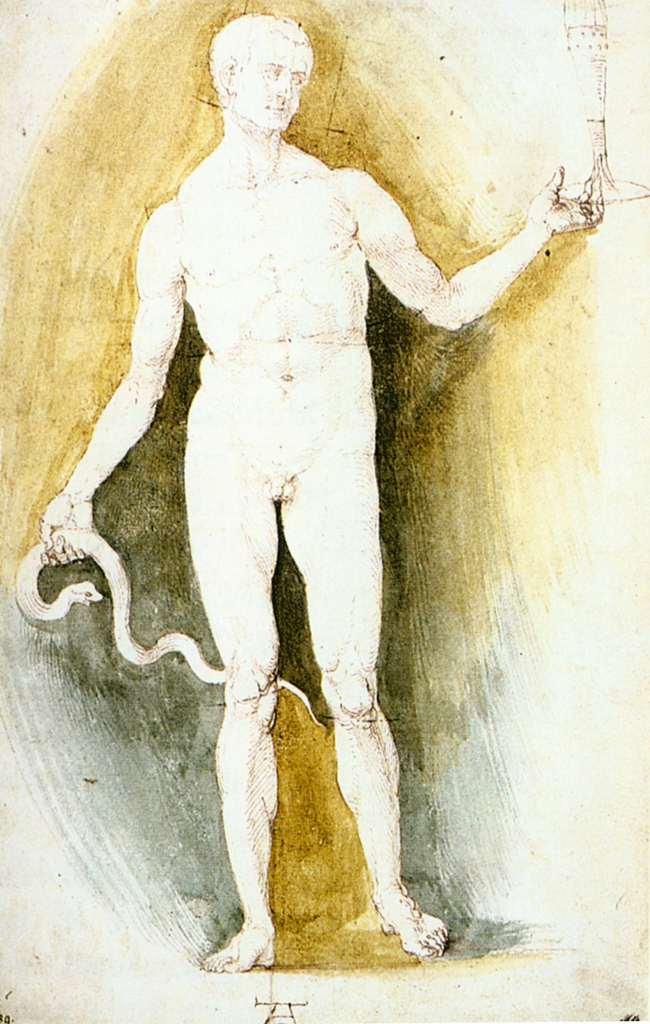 Це зображення має порожній атрибут alt; це ім'я файлу albrecht_durer_-_male_nude_with_a_glass_and_snake_so-called_asclepius_-_wga07049-1.jpg